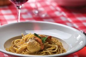 Spaghetti Integral com Vieiras