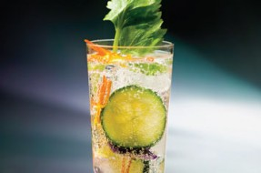 hendricks_spring_tonic