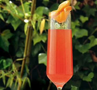 Cocktail_Fontana